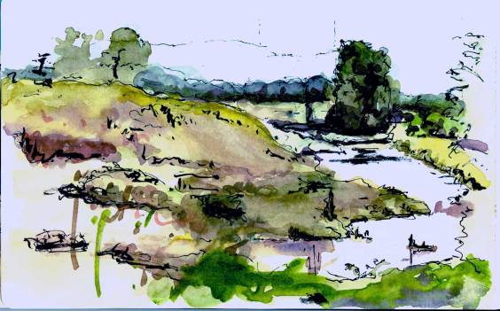 Pond in Oak Island Wildlife area of Sauvie Island - watercolor and ink