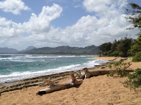 Deserted beach in Kapaa