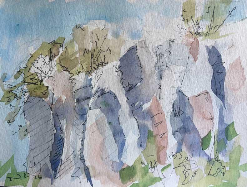Vignali-sketch
